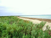 Picture of Sec. 266 Coast Road ( extension ), Moonta Bay