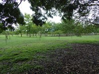 Picture of 630 Litchfield Park Road, Batchelor