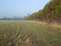 Picture of Lot 2 Beaufort River, Woodanilling