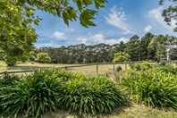 Picture of 599 Ackland Hill Road, Coromandel East