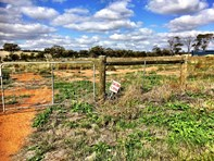 Picture of 10 Hennessy Place, Goomalling