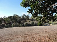 Picture of One Tree Hill