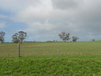Picture of 93/94 Bordertown-Naracoorte Road, Padthaway