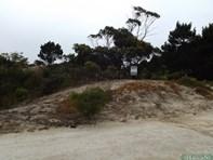 Picture of 103 Borda Road, Island Beach