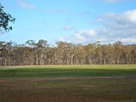 Picture of 251 Dunolly-timor Road, Dunolly