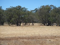 Picture of Lot 203 Bourne Loop, Stratham