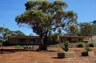 Picture of 254 Timber Creek Crescent, Toodyay