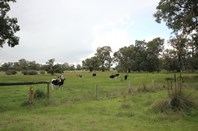 Picture of 433 Ducane Road, North Boyanup