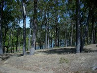 Picture of 75 Goldfields Road, Upper Capel