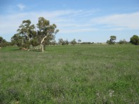 Picture of 2321 Homestead Road, Tintinara