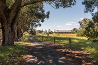 Picture of 121 Hayclif Avenue, North Boyanup