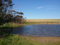 Picture of Lot 201 South Coast Highway, Ravensthorpe