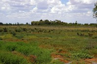 Picture of Lot 1 Wentworth Road, Renmark