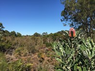 Picture of lot 62 Woolcoot Road, Wellard
