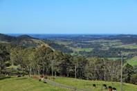 Picture of 154 Tongarra Mine Road, Albion Park