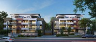 Picture of 53 Kitchener Street, Coorparoo