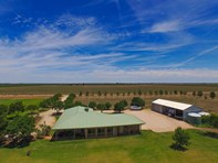 Picture of Farm 283B Toorak Rd, Leeton