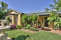 Picture of 17 William Street, Loxton
