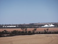 Picture of Lots 801, 802 andamp; 803 Cadoux-Koorda Road, Koorda