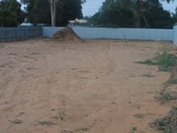 Picture of Lot 49 Milne Street, Loxton