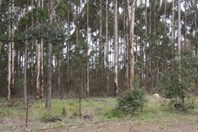 Picture of Lot 461 South Western Highway, Manjimup