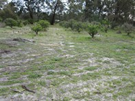 Picture of Lot 2 Matthie Road, Barragup
