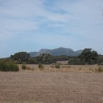 Picture of 04734 Porongurup Road, Mount Barker