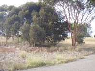 Picture of Lot 30 Langhorne Creek Rd, Wellington