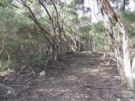 Picture of Lot 32 Bayview Road, Vivonne Bay