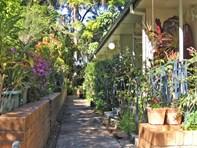 Picture of Unit @ 208 Murwillumbah Street, Murwillumbah