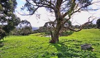 Picture of Lot 3/290 Blowhole Beach Road, Deep Creek