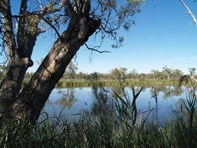 Picture of 2 TULUNKA CREEK, Waikerie