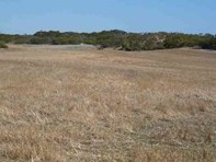 Picture of Lot 74 and 75 Beach Road, Mount Hope