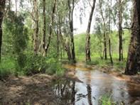 Picture of Dorat Road, Adelaide River
