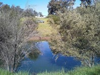 Picture of Lot 83 Macquarie Street, Noggerup