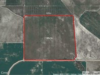 Picture of LOT 66 Strawberry North East Road, Mingenew