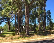 Picture of 1 McLarty Street, Dwellingup