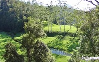 Picture of 3098 North Arm Road, Bowraville