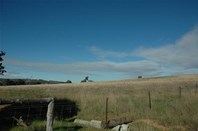 Picture of Lot /9000 Mellows Road, Wandering