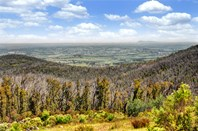 Picture of 505 Coombs Road, Kinglake West