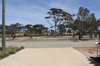 Picture of 95 Noonajin Road, Bruce Rock