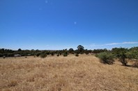 Picture of Lot 381 Slate Quarry Road, Mintaro