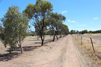 Picture of 230 Dowerin - Meckering Road, Meckering