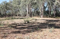 Picture of Lot 9 Bushlands, Tocumwal