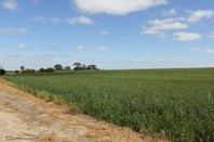 Picture of Lot 27333 Yeomans Road, Narembeen