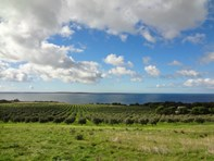 Picture of 813 Lincoln Highway, North Shields via, Port Lincoln