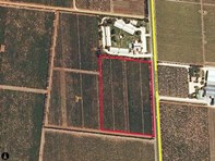 Picture of Lot 200 Riddoch Highway, Coonawarra