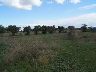 Picture of 324 & 338 Old Port Wakefield Road, Two Wells