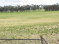 Picture of 2397 Naracoorte Road, Western Flat