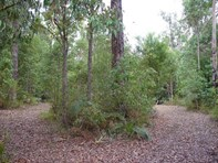 Picture of Lot 7 Karri Lane, Quinninup